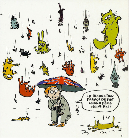 raining-cats.jpg - raining-cats.jpg